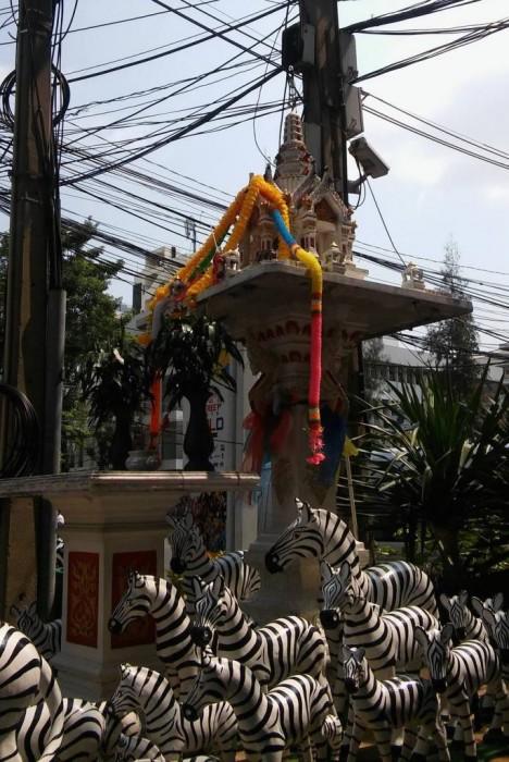 Paikalliseen eläimistöön kuulumattomia otuksia sekä henkien talo (huomaa pilli juomapullossa)